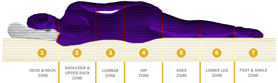 7 Zone Mattress Support Divisions